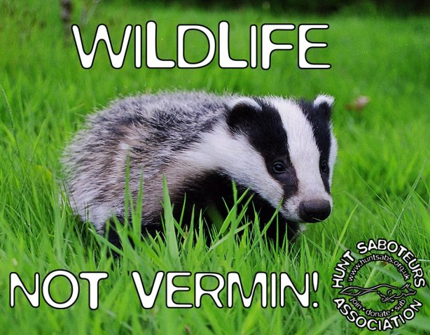 Wildlife not Vermin